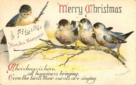 xmasbirds