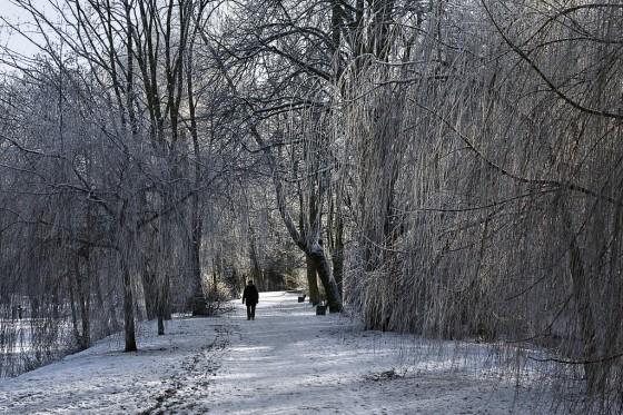 Allein in der Kälte_1024